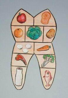 Educational display (dental health) - Tooth food pyramid