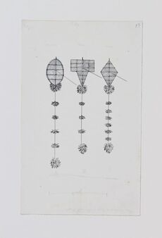 Drawings of Māori kites