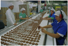 Packing mallowpuffs at Griffin's biscuit factory
