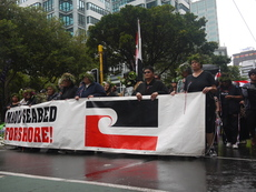 Photographs taken at a 2011 foreshore and seabed protest in Wellington