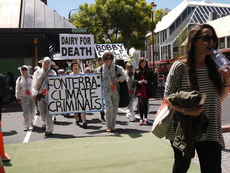 Photographs of a protest against the World Dairy Summit, Wellington