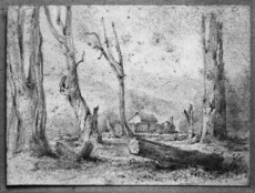 [Swainson, William] 1789-1855 :[Stockade in clearing, Taita] 17 Oct. 184[6 or 1847?]