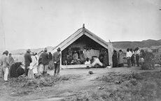 EPIDEMICS AND PANDEMICS: IMPACT ON MĀORI