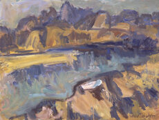 Nelson landscapes