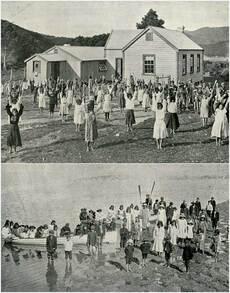 Native school, Whangapē