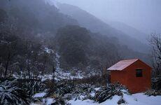 Forest Service Hut