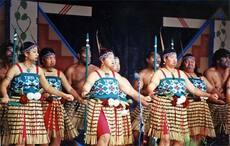 Tūhoe festival