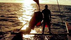 Tagata Pasifika - Hine Moana: A Journey Home