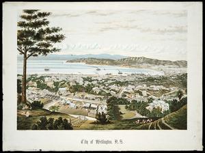 Potts, William 1859-1947 :City of Wellington, N.Z. 1885. W. Potts, del. Wanganui; A.D. Willis [1885].
