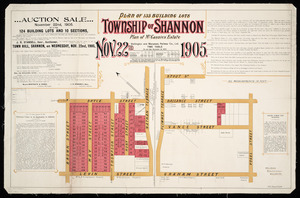 Auction sale ... [cartographic material] : plan of 135 building lots, township of Shannon ... 1905 / Wyn. O. Beere, authorised surveyor.