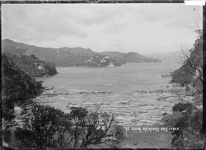 The boom, Mercury Bay, Coromandel Peninsula