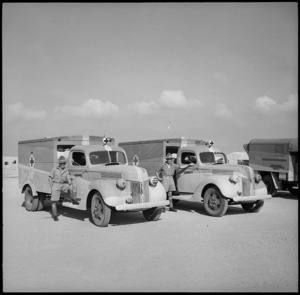 Some of the ambulances presented to the NZEF, Egypt