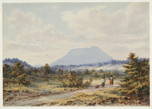 Barraud, Charles Decimus, 1822-1896 :Tawhera Mountain near Opepe, Taupo. 1878.