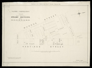 Plan showing sub-divisions of swamp sections nos.4375, 378, 379, 380, 381, 382, 383, 385 Napier [cartographic material] / Robert Lamb, Municipal Engineer.