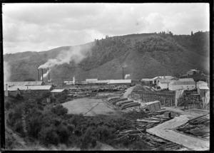 Ellis and Burnand's timber mill, Mangapehi