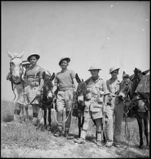 Soldiers of the 1st New Zealand Mule Pack Company, Tunisia - Photograph taken by M D Elias