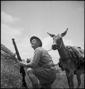 W J Shaw of 1st New Zealand Mule Pack Company, Tunisia - Photograph taken by M D Elias