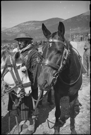 French Moroccan trooper and his horse near the NZ sector of the Cassino front in Italy, World War II - Photograph taken by George Kaye