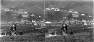 A stereoscopic view of Patanga Crescent, Thorndon, from the Wellington Botanic Gardens