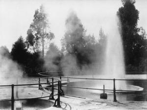 Geyser at the Rotorua Sanatorium