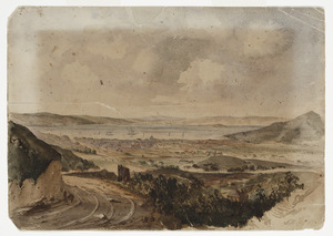 Artist unknown :[Wellington, from the Brooklyn Hills, ca 1860]