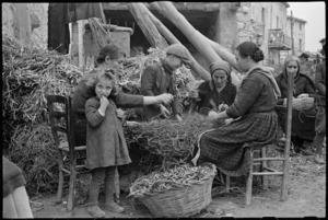 Villagers picking dried beans in area just behind the lines in Italy during World War II - Photograph taken by George Kaye