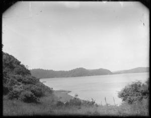 Coastal scene, Kawhia