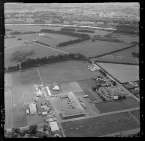 Massey College, Palmerston North, Manawatu-Whanganui