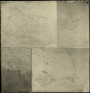 Plan of the province of Hawke's Bay, New Zealand [cartographic material] / compiled and drawn  by Augustus Koch.