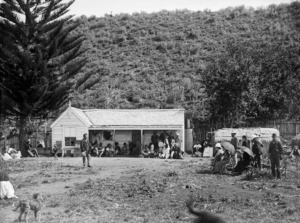 Powhiri for Governor Sir William Jervois, Lady Jervois, and party, at Omiti on Kawhia Harbour by chiefs of Ngati Hikairo, and Tetahi Rahi and Tiki Taimana