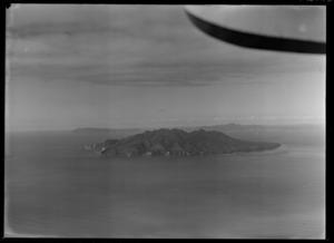 Little Barrier Island, Auckland