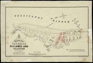 Plan of the Thorndon reclaimed land, Wellington [cartographic material] / surveyed by E.V. Briscoe, Nov. 1878 ; drawn by A. Koch.