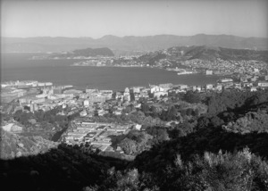 View of Wellington from Tinakori Hill