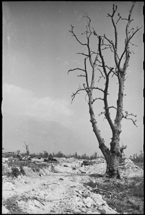 A scene of desolation in Cassino on the day it fell to Allied attack, Italy, World War II - Photograph taken by George Kaye