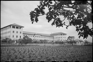 General view of 1 New Zealand General Hospital, Molfetta, Italy, World War II - Photograph taken by George Bull