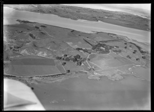 View of the Kellihers' Puketutu Island farm with fenced pastures and homestead with trees looking to Manukau Airfield, Manukau Harbour, South Auckland