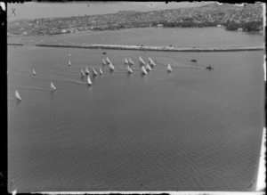 Yachts on Auckland harbour, during the 18 foot yachting championships