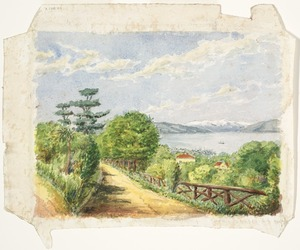 [Clere, Frederick de Jersey] 1856-1952 :[Wellington from the Botanic Gardens. 192-?]