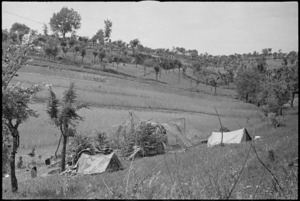 General view of New Zealand Artillery positions among the wheat fields and vineyards near Sora, Italy, World War II - Photograph taken by George Kaye