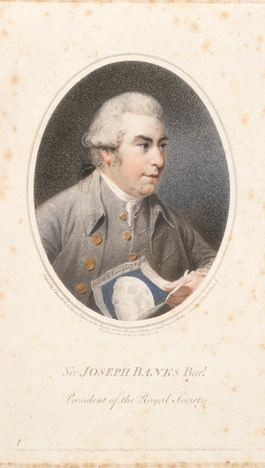 Russell, John, 1745-1806 :Sir Joseph Banks, bart., president of the Royal Society. Engraved by J Collyer; painted by J Russell. [London] 1789.
