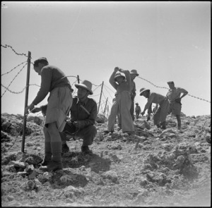 Members of 28 New Zealand Maori Battalion erecting wire fences in Syria during World War II - Photograph taken by H Paton