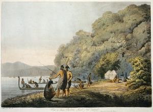 Webber, John 1751-1793 :View in Queen Charlotte's Sound, New Zealand / J. Webber fecit. R.A. - London; Boydell, 1809.