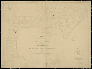 Plan of part of the town of Wellington, shewing the proposed harbour improvements [cartographic material] / Edw. Roberts, acting colonial engineer, 1851.