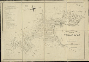 Wise & Co.'s New Zealand directory map of the city of Wellington [cartographic material] / drawn on stone by Thos. George.
