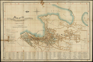 Plan of the city of Wellington and suburbs / by Thomas Ward.