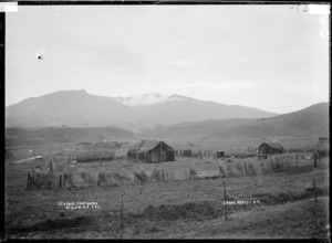 Mt Karioi from Kopua - Photograph taken by Gilmour Brothers