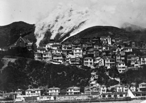 Mount Victoria and Oriental Bay, showing a bush fire