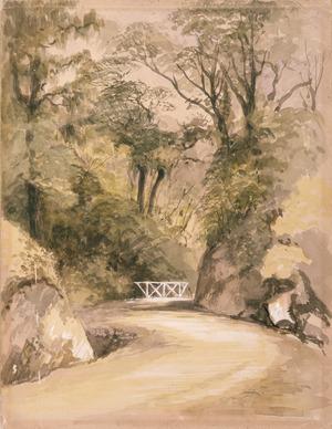[Barraud, Charles Decimus], 1822-1897 :Ngahauranga Road. [1800s]