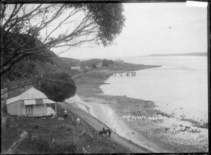 Scene by the waterfront at Port Waikato