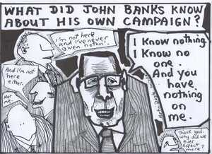 Doyle, Martin, 1956- :What did John Banks know about his own campaign?. 30 July 2012